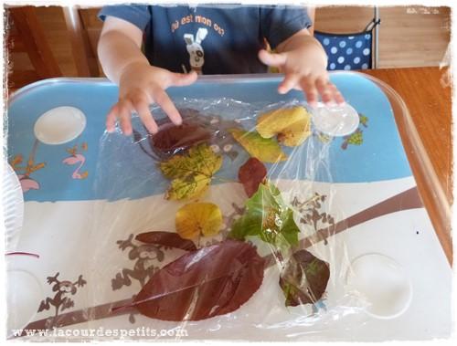 Activité feuilles automne enfant