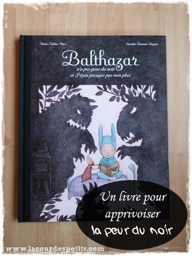 Balthazar n a pas peur du noir livre Une