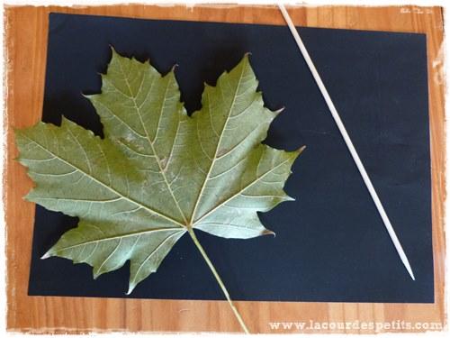 bricolage d 39 automne les empreintes de feuilles 2 la cour des petits. Black Bedroom Furniture Sets. Home Design Ideas