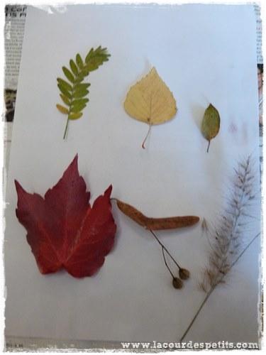 Bricolage automne feuille