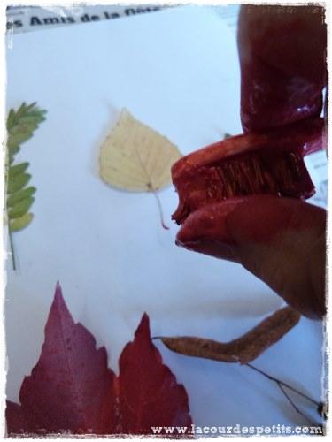 Bricolage automne peinture feuille eclabousse