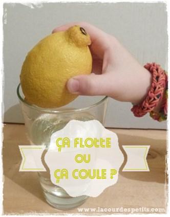 experience citron flotte