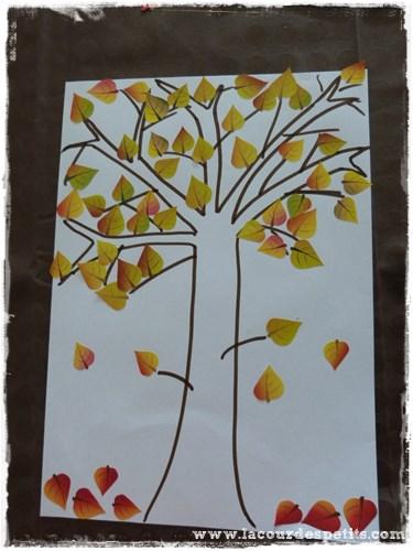 arbre gommette automne