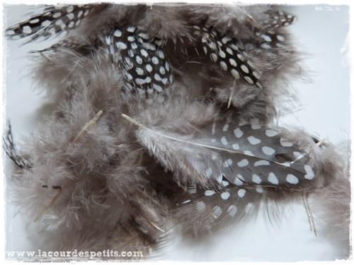 plumes naturelles