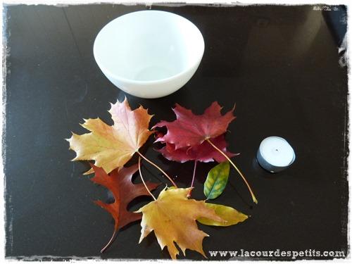 materiel feuille automne cire