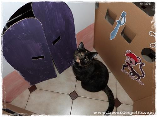 bateau carton chat