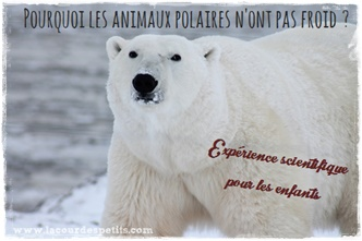 experience scientifique enfants