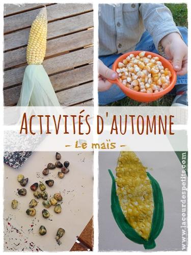 activites manuelles automne