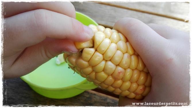 retirer grain maïs