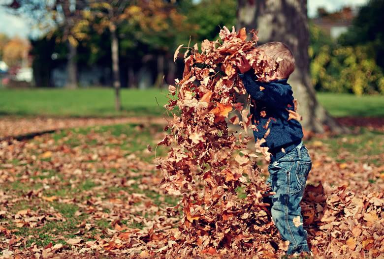 enfant feuilles